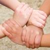 schulratgeber, themen, schulwahl, pädagogische konzepte